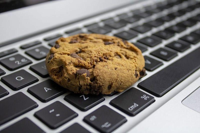 Webseiten-Datenschutz 2021 mit Borlabs Cookie – das bewährte Cookie-Plugin aus Deutschland für WordPress
